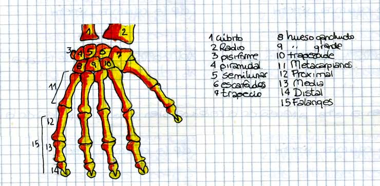 dibujos02b.jpg